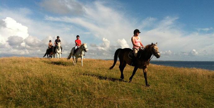 Inishbofin Equestrian Centre